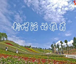周八◆十里蓝山+寻梦谷99元特价游