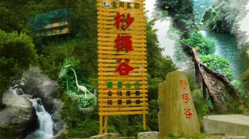 安溪桫椤谷风景区地处闽南金三角,泉州与厦门交界处的安溪志闽大